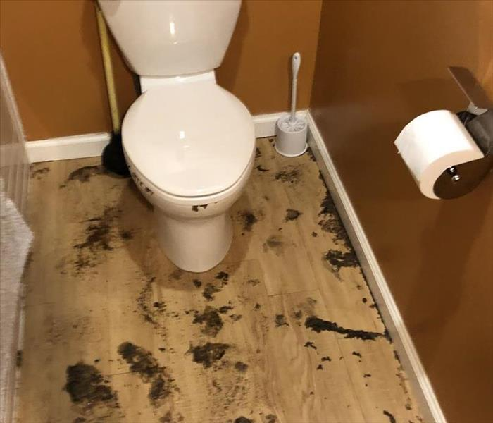 Sewage loss in bathroom