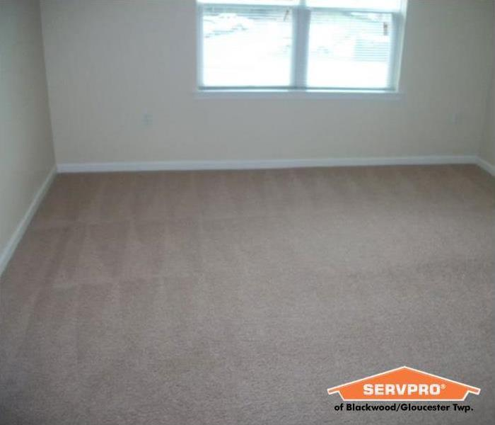 freshly cleaned carpet in an empty apartment bedroom
