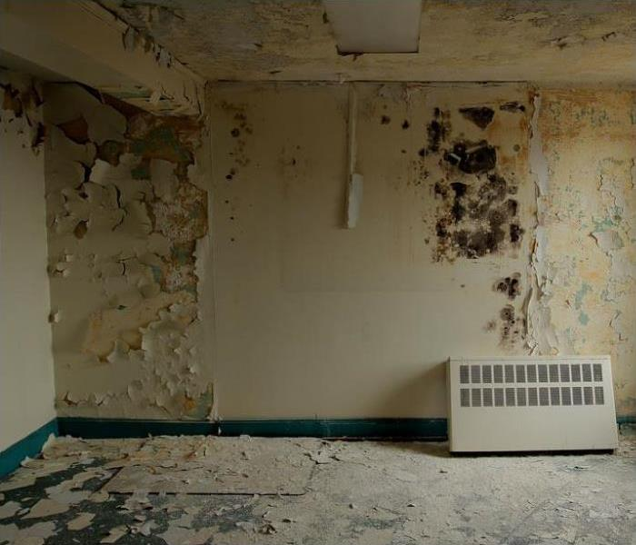 Mold Remediation Quarantine Methods used by SERVPRO