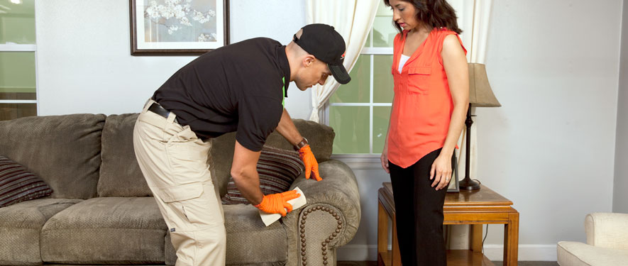 Blackwood, NJ carpet upholstery cleaning